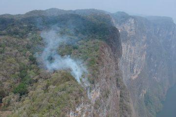 Quemadas 175 hectáreas en paredes del Cañón del Sumidero