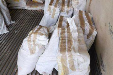 FGR asegura más de 600 kilos de cocaína en Huixtla, Chiapas