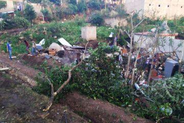 Lluvia dejó 17 árboles caídos y 167 casas con afectaciones