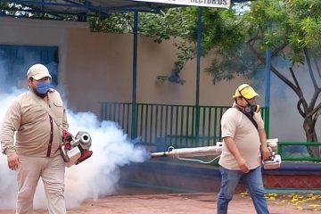 4 muertos y 196 infectados por dengue en Chiapas