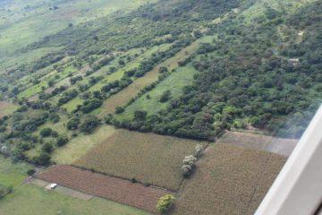 Restituye FGE 344 hectáreas invadidas en Socoltenango