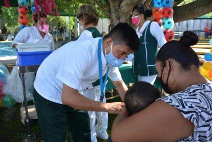 Por el momento, Chiapas libre de influenza