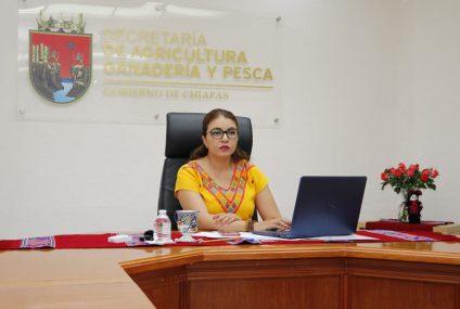 Piden cambio de titular de la Secretaría de Agricultura y pesca de Chiapas