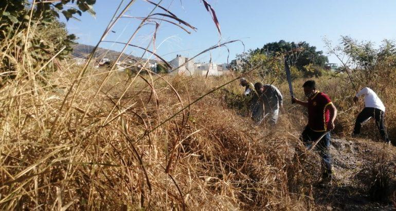 Mantiene Chiapas 90.4 % de su territorio sin problemas por sequía