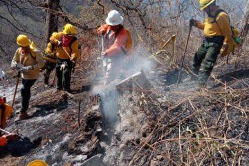 Sube a 14 el número de incendios activos en Chiapas