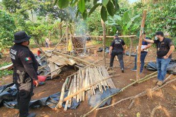 Grupo Interinstitucional restituye predio invadido en Zona Alta de Tapachula