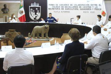 En consenso y con medidas preventivas, regresan a clases presenciales 500 escuelas de Chiapas