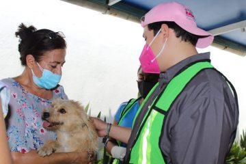 Participa Eduardo Balcázar en Campaña de esterilización de perros y gatos