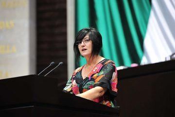 Diputada propone destinar presupuesto federal a niñez y adolescencia en orfandad por Covid-19
